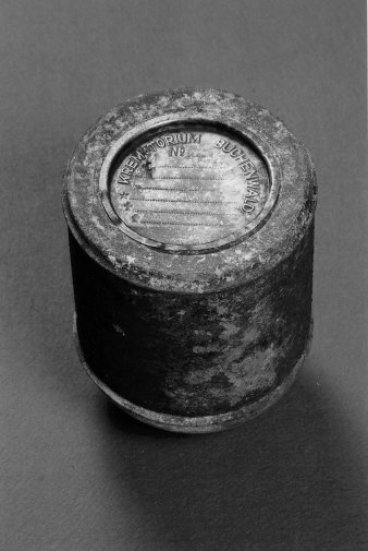 Black-and-white photgraph of an ash capsule